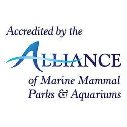 Accredited by the alliance of marine mammal parks & aquariums