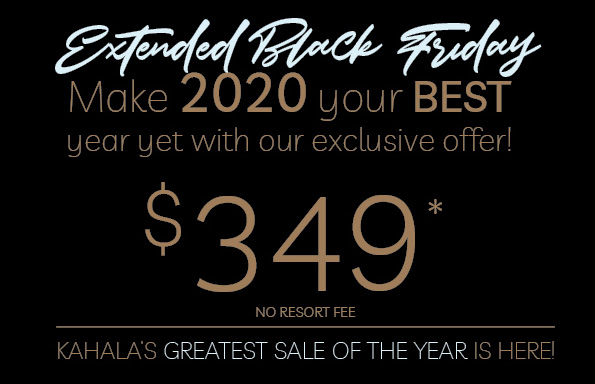 Best Black Friday 2020.Black Friday Exclusive Offer The Kahala Hotel Resort